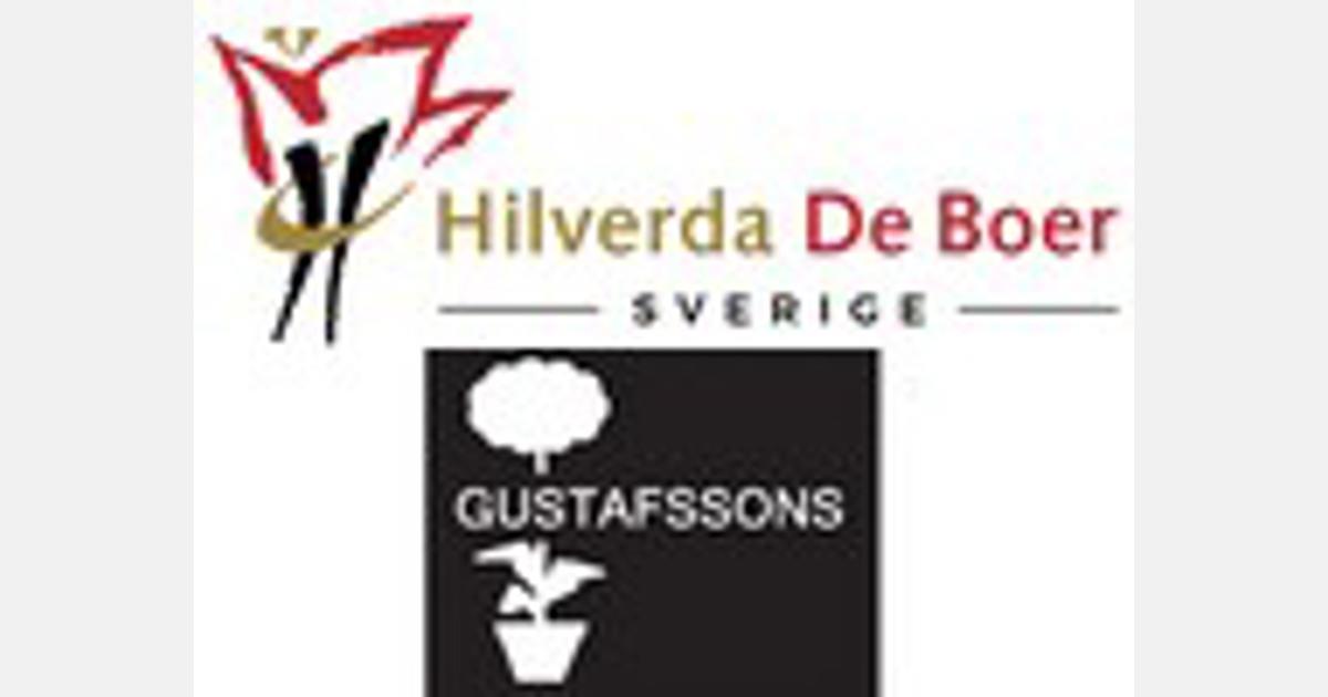Hilverda De Boer Neemt Zweedse Gustafssons Blommor Over