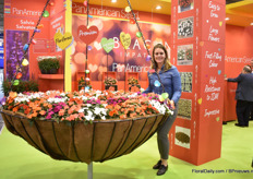 Denise van Kampen of PanAmerican Seed presenting the Beacon Impatiens varieties in a huge basket. Beacon is known for its resistance against downy mildew. The already showed the variety at the California Spring Trials and the FlowerTrials in 2019, but are now officially launching the variety.