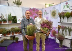 Nitzan and Asaf Nir of Nir Nursery presenting their Jupiter wax line. Jupiter wax is now a commercially protected name and the series is available in white, pink and purple and in pot and cut flowers.