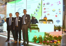 Rino Caccia, Paolo Gazzola, and Mario Rigatti of Padana in front of their new stand. This Italian company specialises in the production of young plants from seed and cuttings of a wide range of ornamental pot and bedding plants as well as vegetable plants. Moreover, the company runs its own breeding activities in Primula (Primabella) and Viola and is the exclusive distributor of Lavandula Lavinia (Plantinova) and Argyranthemum Grandaisy (MNP Flowers) for Italy.