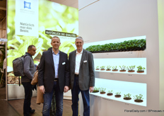 Jürgen Gervordemark and Thomas Becker of Kötterheinrich showing all stages of plants they supply. Also new this year is hydrangea paniculata and the double flowering hydrangeas of HBA.
