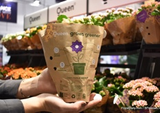 A new paper sleeve for the products of Queen. It tells the sustainable story of how it is raised, so raised on rain water, grown in recyclable and recycled pots, biological pest control is used. According to Louise Jepsen, the supermarkets are looking for alternatives to plastic.