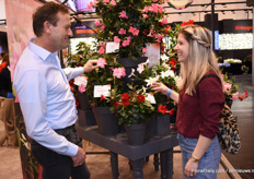 At the Syngenta booth John van Uffelen is showing the Mandevilla Rio Grande Pink to Femke Akkersdijk.